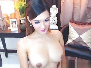Pretty Big Cock Asian Shemale Cam